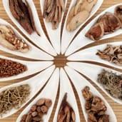 Herbal Medicine Centennial